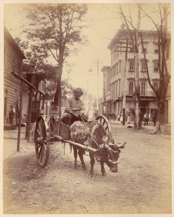 Street Scene Savannah Georgia 1880s