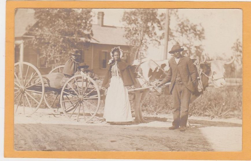 Black American Real Photo Postcard - African American Family Ox Drawn Cart NC