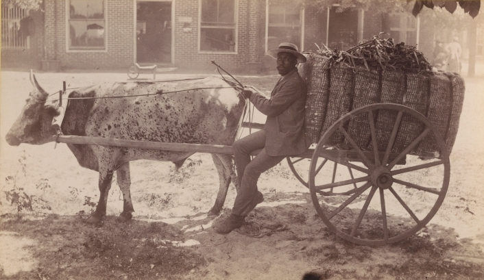 Man with ox cart and supplies