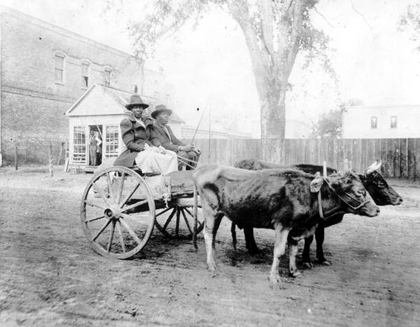 Unidentified African American couple in an ox cart - Quincy, Florida